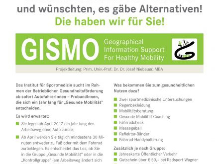 GISMO - Geographical Information Support for Healthy Mobility